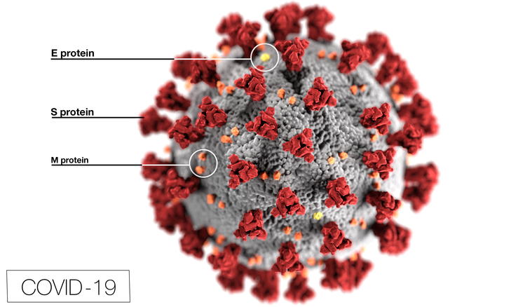 Coronavirus outbreaks significantly reduce airborne emissions